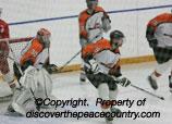 nphl north peace hockey league